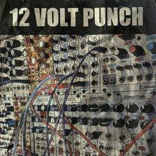 12 Volt Punch