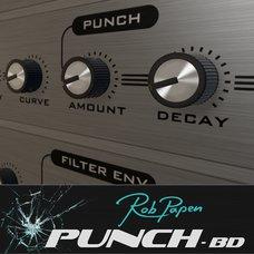 PunchBDRE Instrument