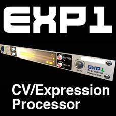 EXP1 Expression Processor