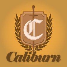 Amplifikation Caliburn Guitar Amp
