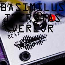 Basimilus Iteritas Vereor