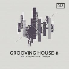 Grooving House Vol. 2