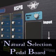 Natural Selection Pedal Board