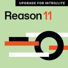 Reason 11 Upgrade for Intro/Lite