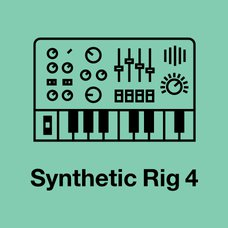 Synthetic Rig 4